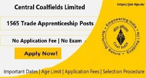 Central Coalfields Limited Apprenticeship Posts